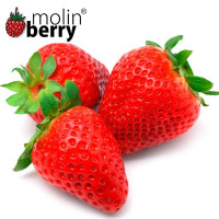 MOLINBERRY SWEET STRAWBERRY AROM